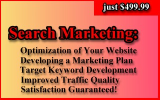Search Engine Optimization & Marketing Package